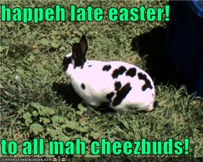 happeh late easter!  to all mah cheezbuds!