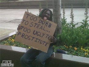 Homeless WIN