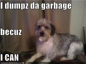 I dumpz da garbage becuz I CAN