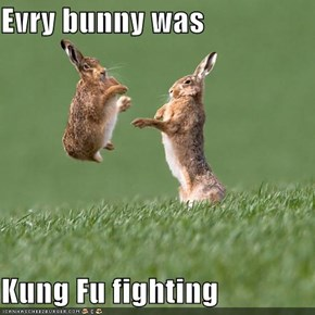Evry bunny