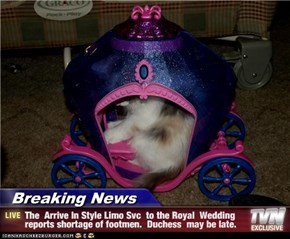 Breaking News - The  Arrive In Style Limo Svc  to the Royal  Wedding reports shortage of footmen.  Duchess  may be late.