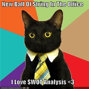 New Ball Of String In The Office  I Love SWOT Analysis <3