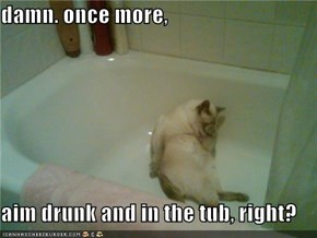 damn. once more,  aim drunk and in the tub, right?