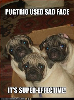 PUGTRIO USED SAD FACE