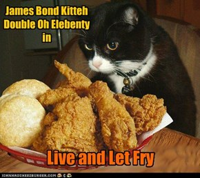 James Bond Kitteh Double Oh Elebenty in