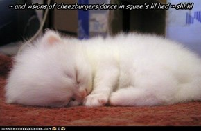 ~ and visions of cheezburgers dance in squee's lil hed ~ shhh!