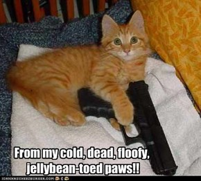 From my cold, dead, floofy,  jellybean-toed paws!!