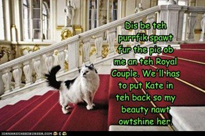 Dis be teh purrfik spawt fur the pic ob me an teh Royal Couple. We'll has to put Kate in teh back so my beauty nawt owtshine her.