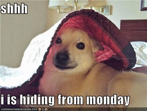 shhh  i is hiding from monday