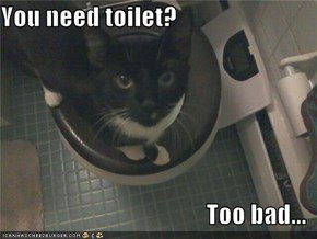 You need toilet?  Too bad...