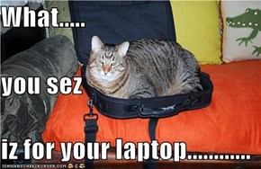 What..... you sez iz for your laptop............