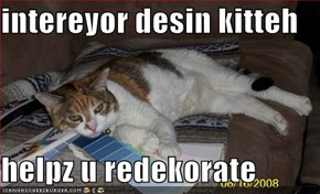 intereyor desin kitteh  helpz u redekorate