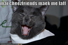 mai cheezfriends maek me laff