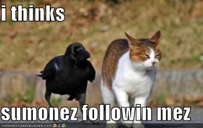 i thinks  sumonez followin mez