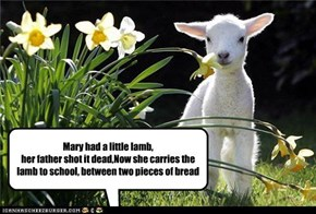 Mary had a little lamb, her father shot it dead,Now she carries the lamb to school, between two pieces of bread