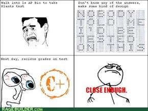 AP Tests...