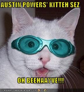 AUSTIN POWERS' KITTEH SEZ  OH BEEHAAYVE!!!
