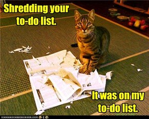Shredding your to-do list.