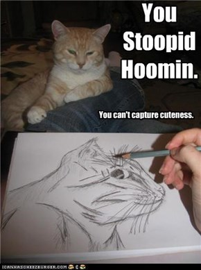 You Stoopid Hoomin.