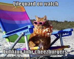 Lifeguard on watch  Luhking fuhr cheezburgers