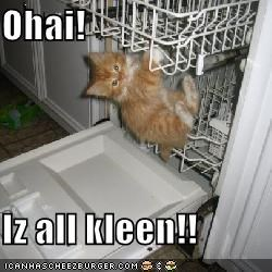 Ohai!  Iz all kleen!!