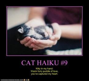 CAT HAIKU #9