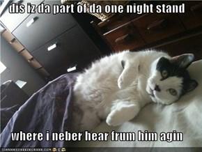 dis iz da part of da one night stand  where i neber hear frum him agin