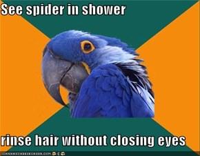 See spider in shower  rinse hair without closing eyes