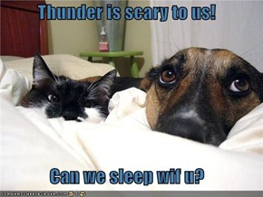 Thunder is scary to us!