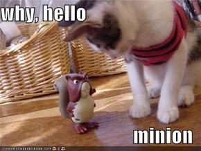 why, hello  minion