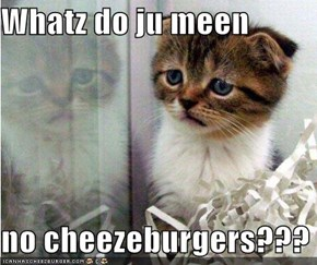 Whatz do ju meen  no cheezeburgers???