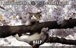 put down the f@$!#% camera and  HALP