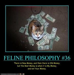 FELINE PHILOSOPHY #36