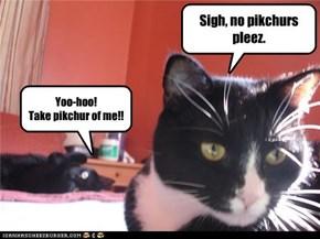 Sigh, no pikchurs pleez.