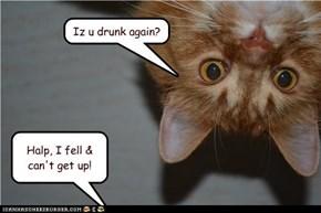 Iz u drunk again?