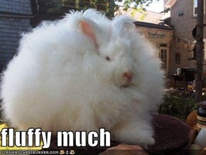 fluffy much