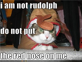 i am not rudolph do not put the red nose on me
