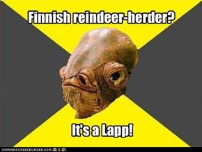 Finnish reindeer-herder?