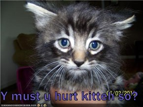 Y must u hurt kitteh so?