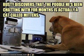 RUSTY DISCOVERS THAT THE POODLE HE'S BEEN CHATTING WITH FOR MONTHS IS ACTUALLY A CAT CALLED MITTENS.
