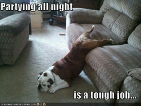 Partying all night  is a tough job...