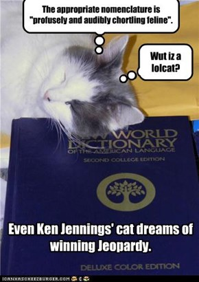 Even Ken Jennings' cat dreams of winning Jeopardy.
