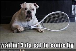 waitin' 4 da cat to come by