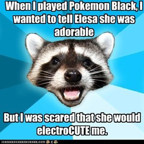 Bad Pun Coon: Pokemon Kid's crush