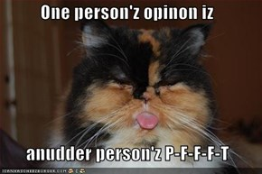 One person'z opinon iz          anudder person'z P-F-F-F-T