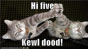 Hi five  Kewl dood!