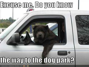 Excuse me. Do you know  the way to the dog park?