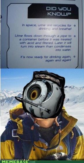 Bear Grylls: Gotta Go...