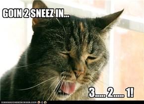 SneezeCat