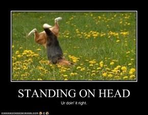 STANDING ON HEAD